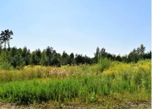 Ērgļu muiža, Ķekava 3.11 ha