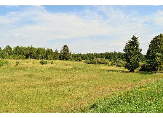Šķilteri, Salaspils by labamaja