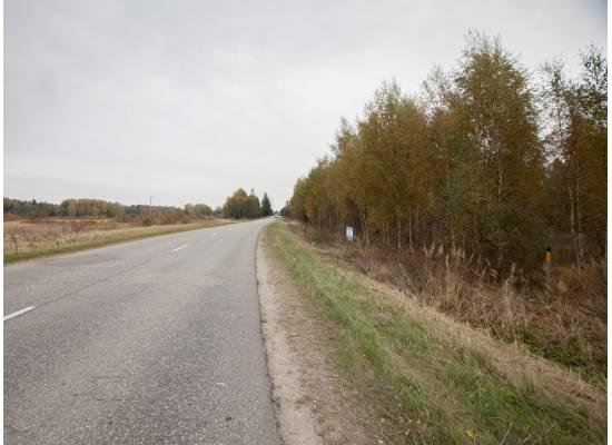 Vidusruikas, Mālpils by labamaja