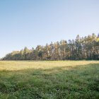 Mežkalni, Salaspils by labamaja