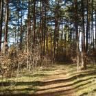 Rīga, Jaunciema 5.šķērslīnija 16 by labamaja