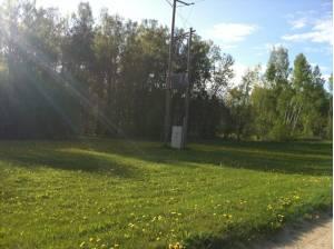 Mežatakas, Jelgava 4300 m2